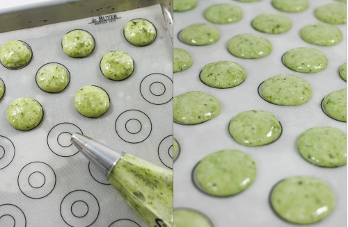 Piping macarons with template